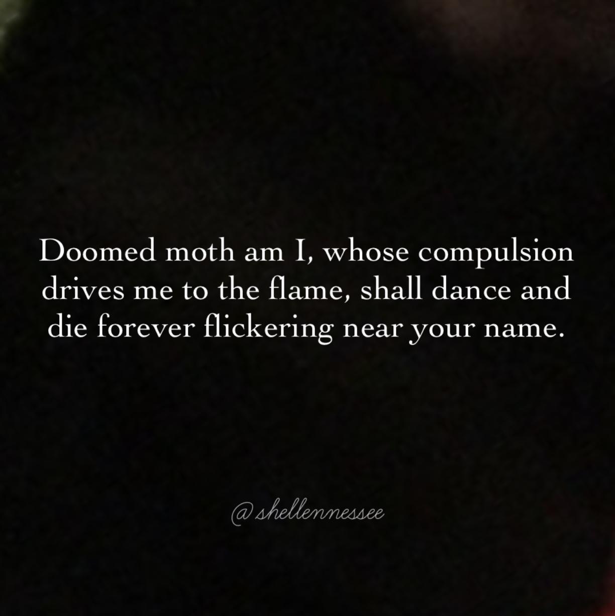 Doomed Moth